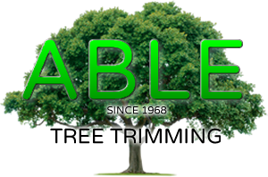 Menifee Stump Grinding Services, Stump Removal Logo
